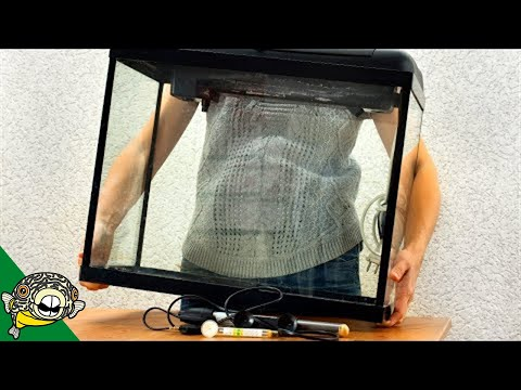 Watch This BEFORE You Setup Your Next Fish Tank!