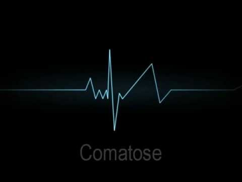 Skillet - Comatose (Lyrics) [HD]