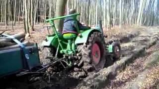 Deutz Bauernschlepper F2L612 mit Holzfuhre am Berg