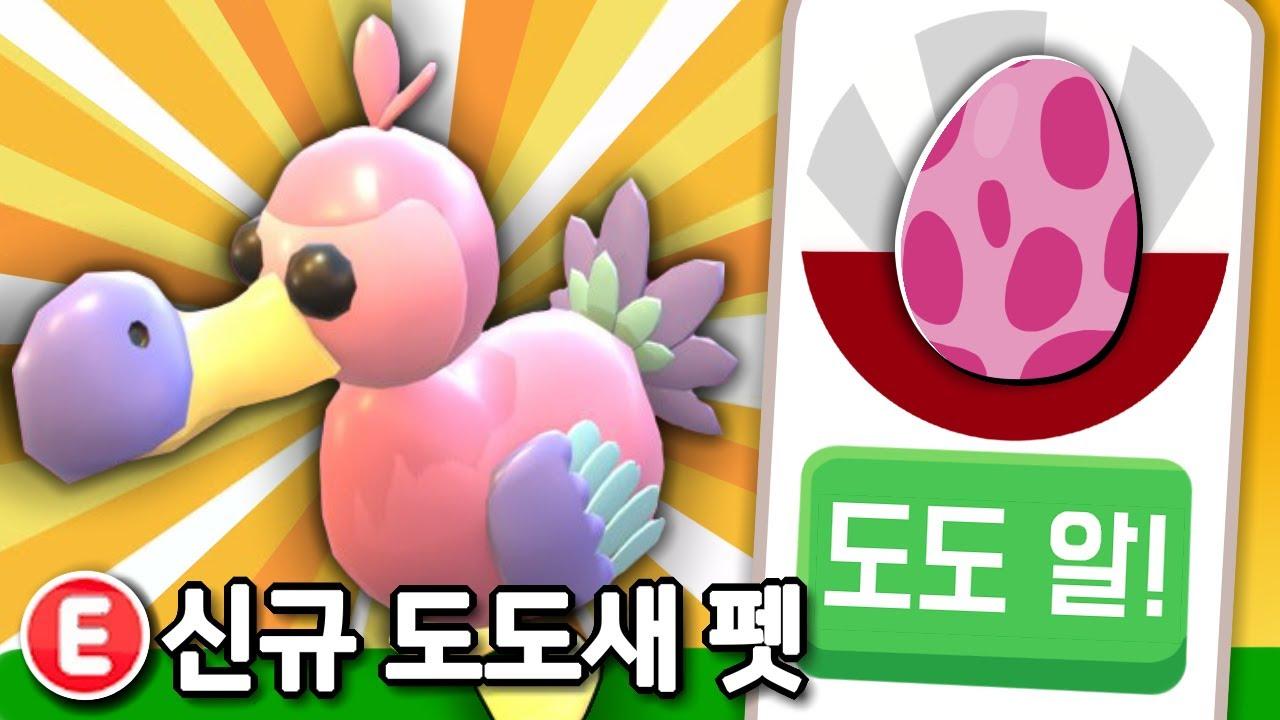 입양하세요 신규 펫 '도도새' 업데이트?! + '도도 에그?!' 🔥 (로블록스)
