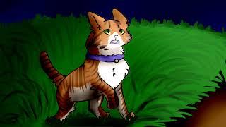 Cat Warriors(Коты воители):Стань Диким!(Трейлер)
