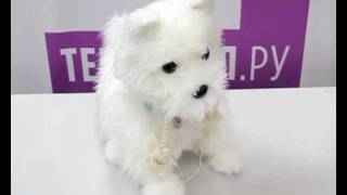 Интерактивная игрушка Тобби - мой верный пёс