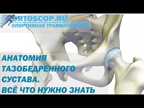 Артроз – причины, симптомы, осложнения и методы лечения