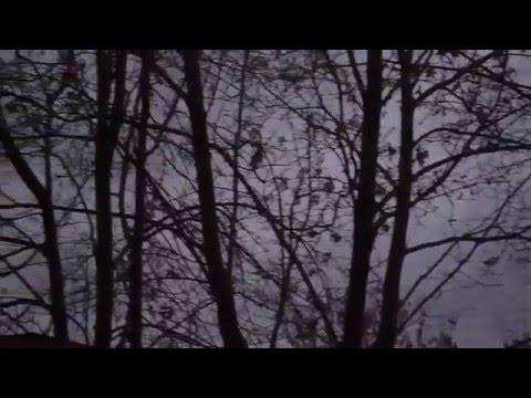 Сумерки Осенний вечер Здесь темнеет рано 28 10 2015