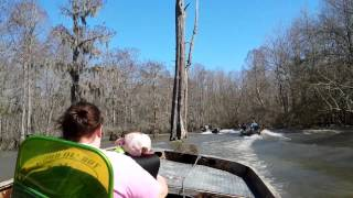 Sparkleberry Swamp Riding 3/8/15