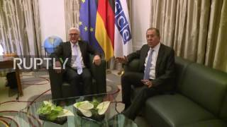 Germany  Lavrov and Steinmeier hold talks in Hamburg