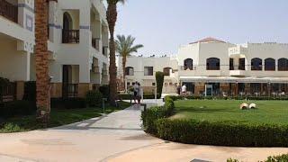 Египет Otium Family Amphoras Beach Resort 5 Письмо от гида Вечерняя Шоу Программа