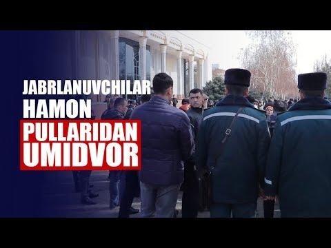 «Human» Agentligi Jabrlanuvchilari Pullarini Qaytarishni Talab Qilmoqdalar