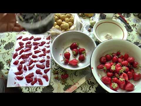 как собрать семена с клубники