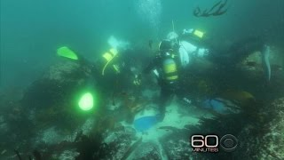 Ancient artifacts recovered from slave ship