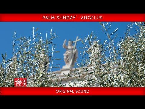 Pope Francis - Celebration of Palm Sunday - Angelus prayer 2019-04-14