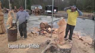 Chainsaw art: From stump to bear under 40 minutes