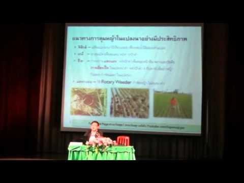 3rd Thailand INWEPF SYMPOSIUM-สุภชัย ปิติวุฒิ