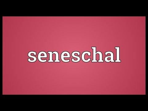 Header of seneschal