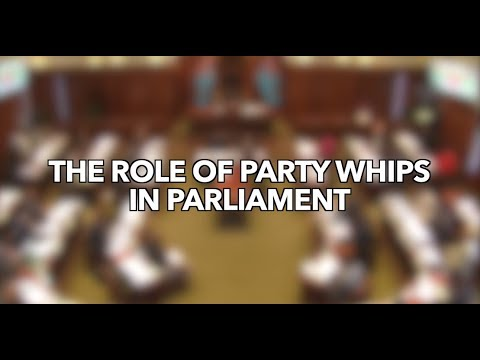 The Role of the Whips in Parliament