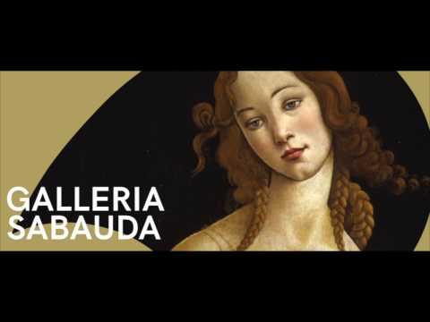 Nuova immagine dei Musei Reali Torino