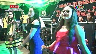 Remix Full durasi 30 Menit bersama OT DUTA MUSIC Live di Beringin Jaya, Mesuji Makmur