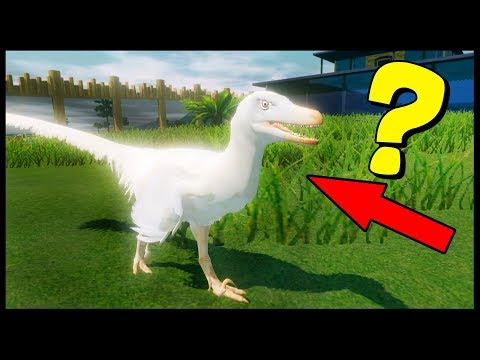 RARE ALBINO VELOCIRAPTOR?! JURASSIC WORLD SIMULATOR - Prehistoric Kingdom Gameplay