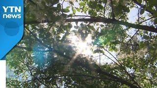 [날씨] 벌써 여름? 서울 28℃...오존·자외선 주의…