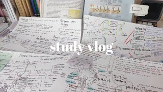 study vlog 📝 maintaining my motivation, mind mapping