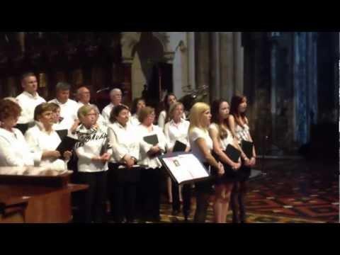 Ave Maria - St John Neuman's Choir - St Patricks C...