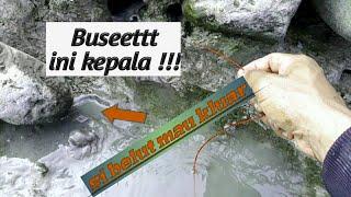 Belutnya sampe keluar lubang    eel fishing Taiwan,tainan