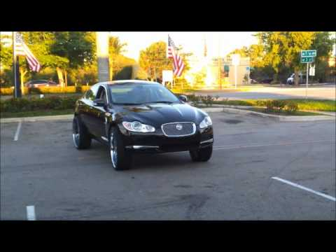 Jaguar on 26