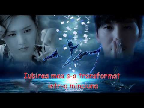 Lim Jeong Hee -Poison love(shark ost) with romanian subtitle