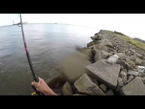 Jetty Fishing In Jacksonville