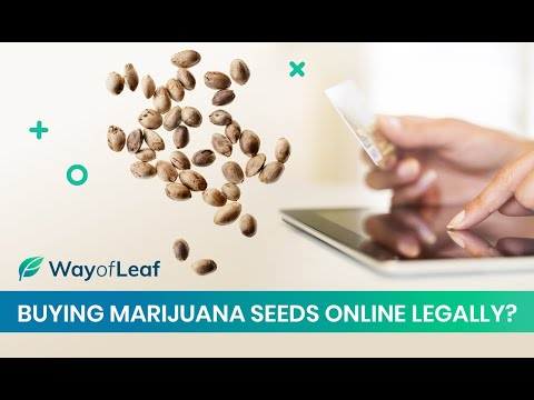 Buying Marijuana Seeds Online Legally