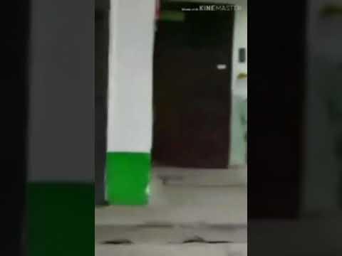 Житель Бендер заснял на видео полчища крыс, которые обитают в мусоропроводе девятиэтажного дома