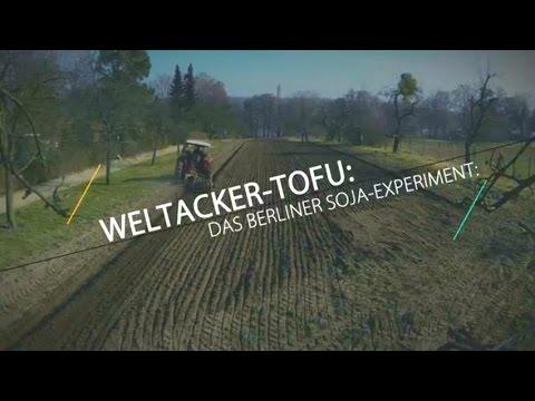 Weltacker-Tofu: Das Berliner Soja-Experiment