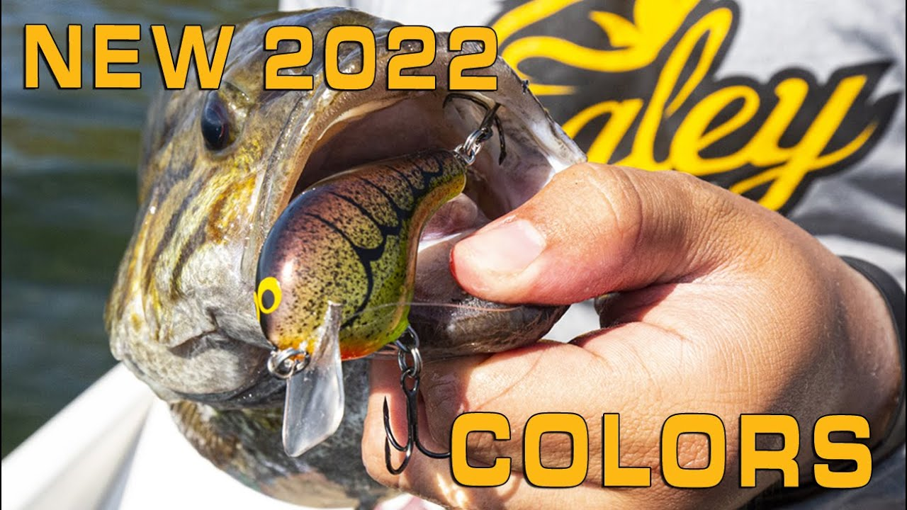 HOT NEW CUSTOM CRANKBAIT COLORS (AVAILABLE SPRING 2022)