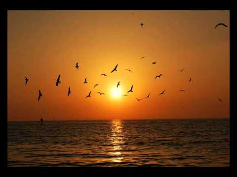 Audision-Yellow Sunset (Robag Wruhme Stoylago Edit)
