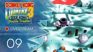 Donkey Kong Country 3 [Livestream] - #09 - Kongs im Visier