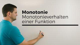 Monotonie, Monotonieverhalten einer Funktion, Steigung untersuchen | Mathe by Daniel Jung