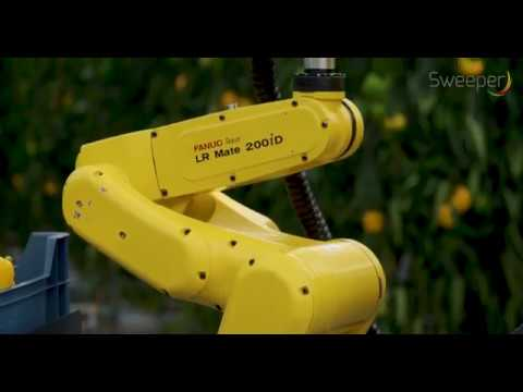 The SWEEPER robot (English)
