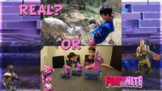 Fortnite Llama in real life or Llama Piñata? MAUI GR