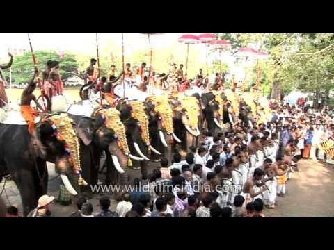 Festival beats: Chenda melam and kombu at Thrissur Pooram