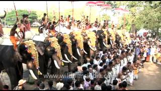 Festival beats: Chenda melam and kombu at Thrissur Pooram