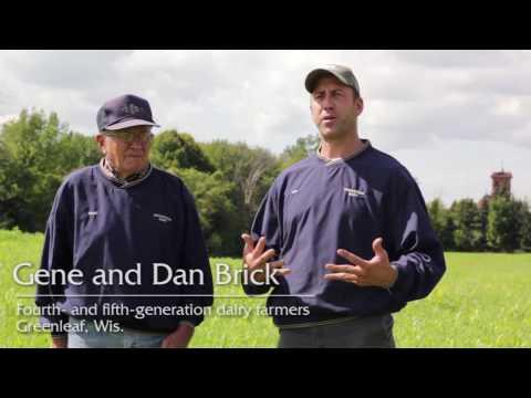 Brickstead Dairy's #sustainability journey
