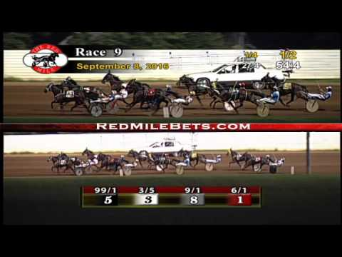 Red Mile Racetrack Race 9 9-8-2016