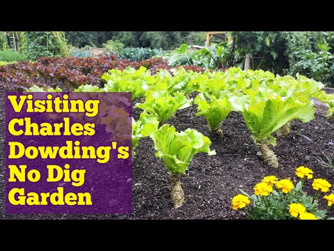 Charles Dowding | Join The No Dig Organic Gardening Revolution