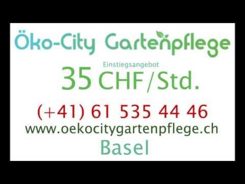 Eichhornstrasse  Basel   35CHFstd  Gärtner  4059