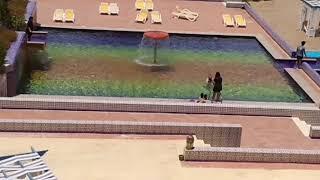 Святой отец купается без рясы.Мой вид из окна и отзыв об отеле.