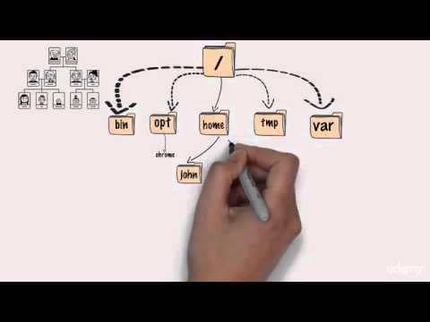 Linux Command Line Basics - part 2