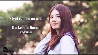 Lemon - Kenshi Yonezu (Lyrics Ve Türkçe Çeviri) [Cover By Raon Lee]