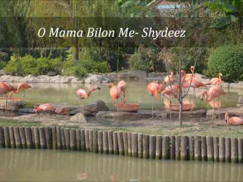O Mama Bilon Me - Shydeez (PNG Music)