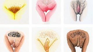My Vulva's Imperfect –  #IAmNotAshamed