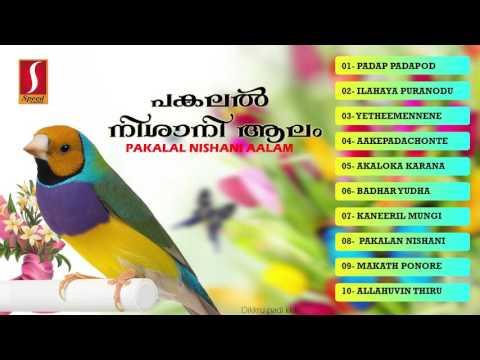 pakalil nishani aalam(പകലൽ നിശാനി ആലം  ) | Muslim devotional songs | supeerhit Mappila pattukal